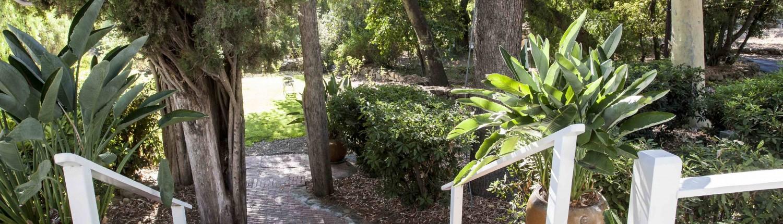 Garden Area of Pepper Tree Retreat